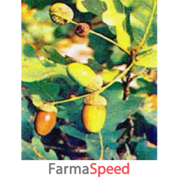 msa quercus peduncol 50 ml