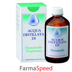 hamamelis acqua distill 250ml