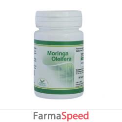 moringa oleifera 60 capsule