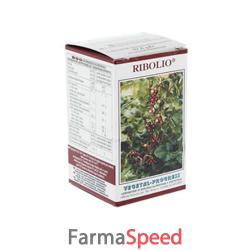 ribolio 55 capsule 500 mg